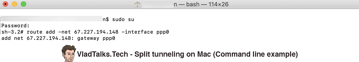 Split tunneling manual setup - Command line example.